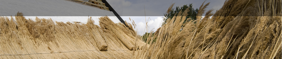Tas100 Thatch Fireboard Shop Thatching Advisory Services